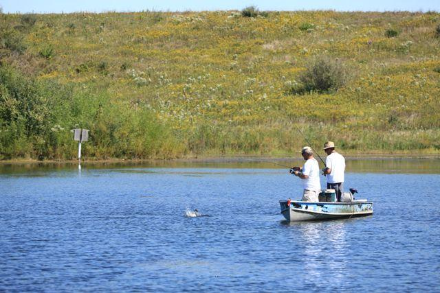 Dnr for Fishing lakes in illinois